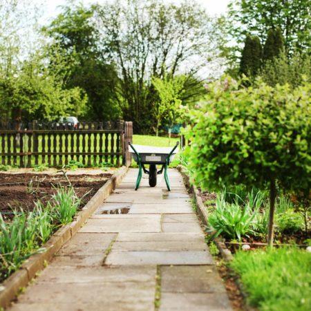 Jak przygotować ogród do wiosny - terminy prac