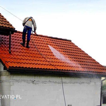 Jak oczyścić dach domu z mchu i pleśni?